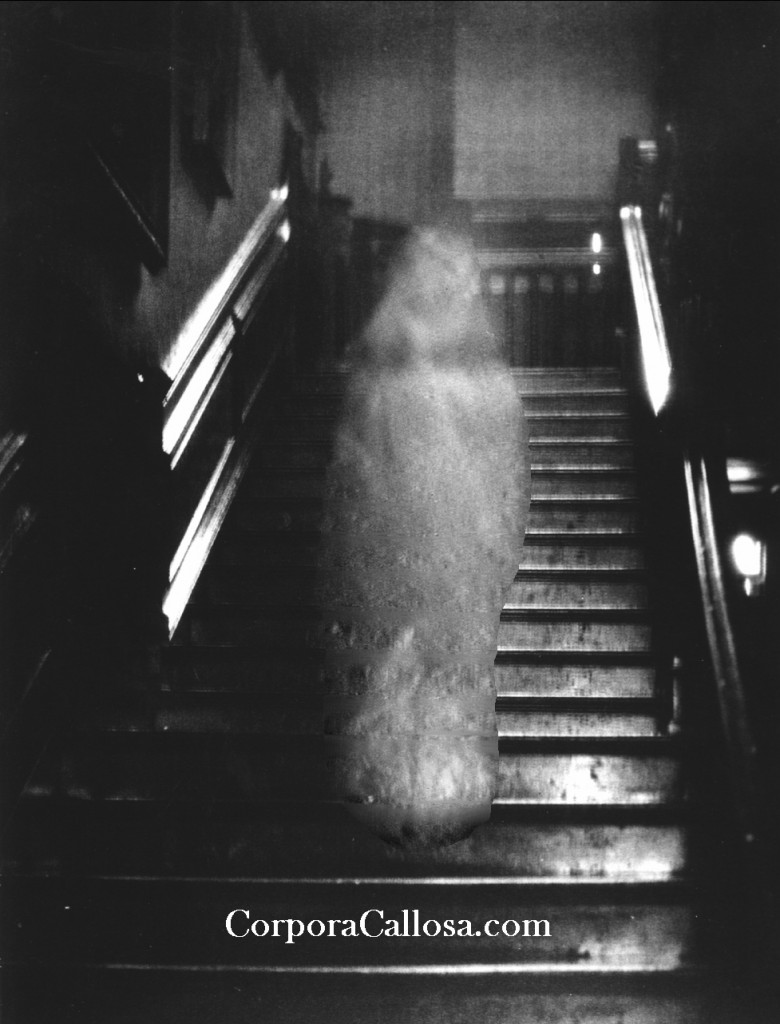 Enhanced Brown Lady of Raynham Hall on the Stairs